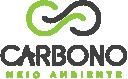 Grupo Carbono